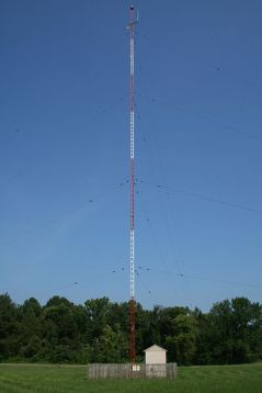 antenna for an AM radio station transmitter